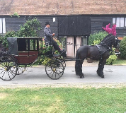 Horse and Carriage Hire in Manchester